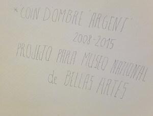 Joëlle Tuerlinckx - coin d'ombre argent 2008-2015 Havana
